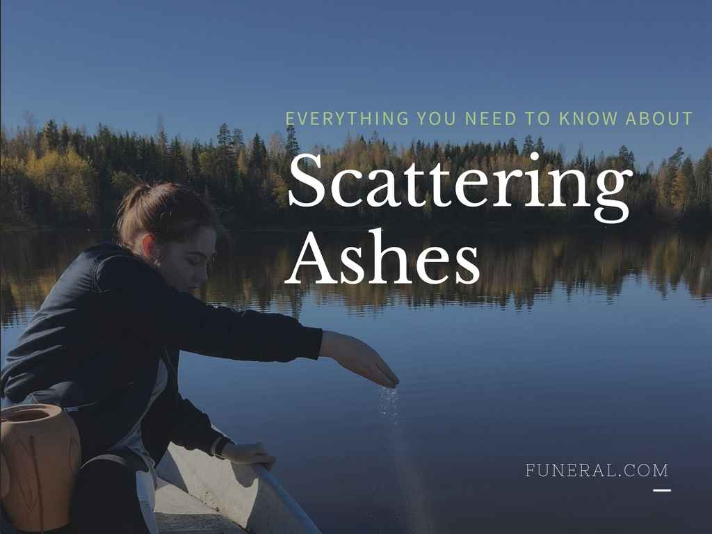 Scattering Ashes: Everything You Need to Know